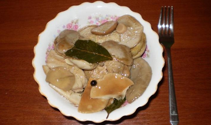Рецепты соления сыроежек