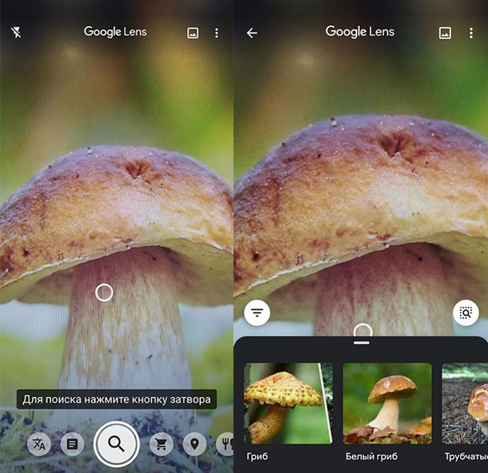 Приложение Google lens