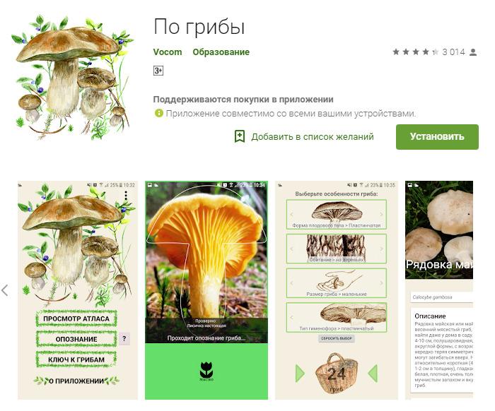 Приложение по грибы